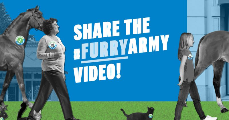 Join the Furry Army